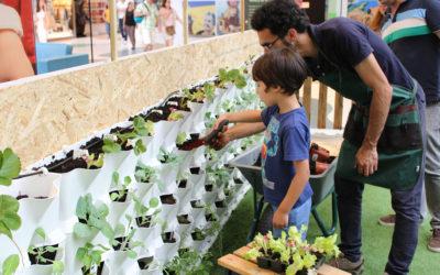 Workshops de Horticultura para niños y adultos – Huerta Vertical